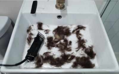 Statewide Ban on Haircuts